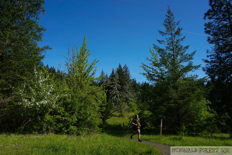 20190504.gw.mac forest 50K (74 of 123).jpg