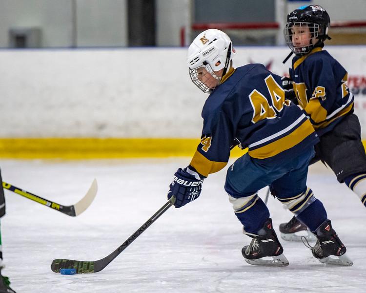 2019-02-03-Ryan-Naughton-Hockey-20.jpg