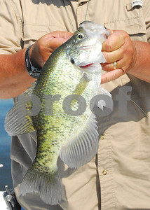 texas-crappie-fishermen-are-also-seeking-shallow-spawning-areas