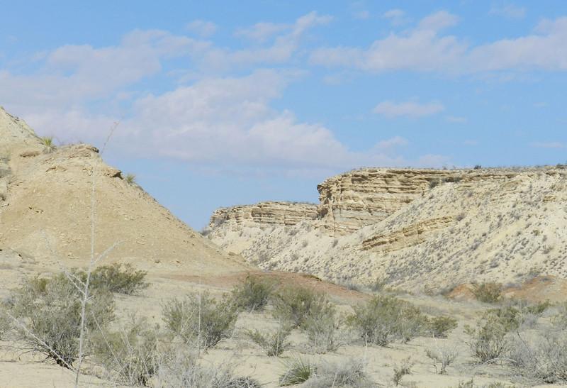painted dunes9.jpg