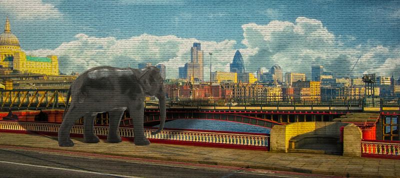Elephants Loose in London