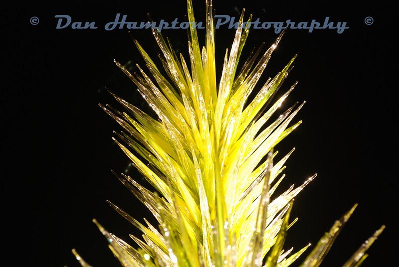 Desert Botanical_319.JPG