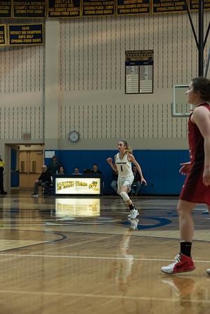 Spring-Ford 2018 Basketball