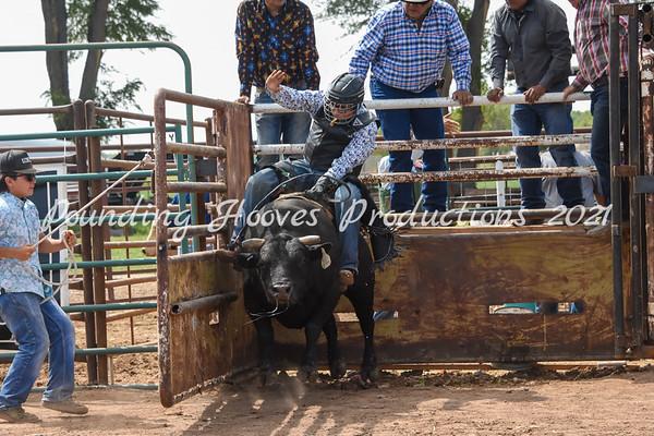 Sr Mini Bulls