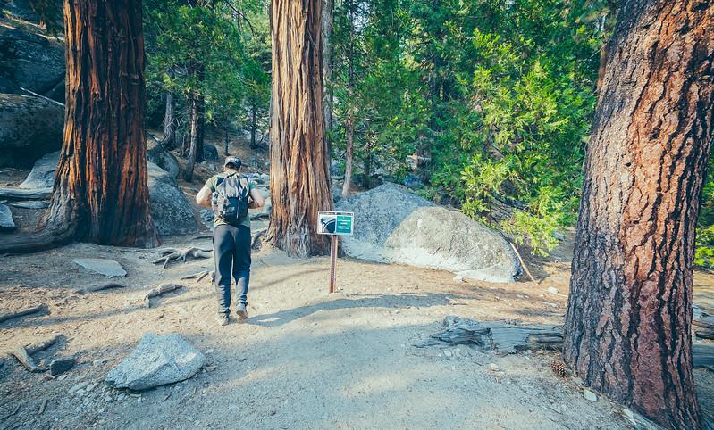 08_10-13_2017_Yosemite_ayushHalfdometrail.jpg