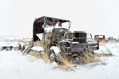 Lillian's Boneyard - Snow Day