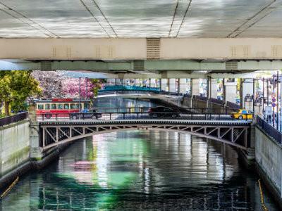 Under the bridge: sakura cherry blossoms and sightseeing bus at Yokohama