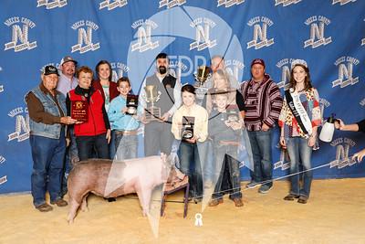 Nueces County Jr. Livestock Show