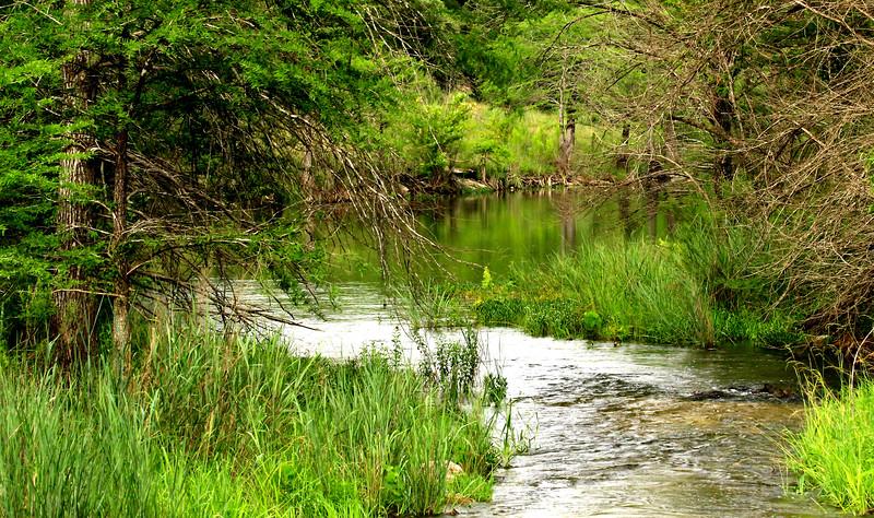 Medina River 6-21-15 172.jpg