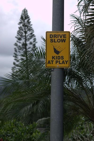 Hawaii_0295 (Large).jpg