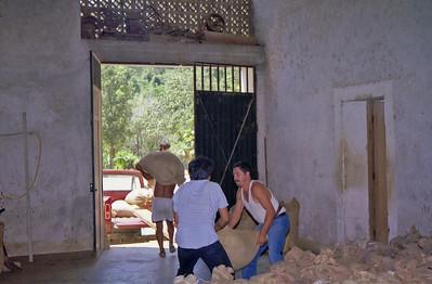 Coffee Plantation Oaxaca 1998