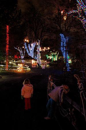 Zoo Lights - December 2008