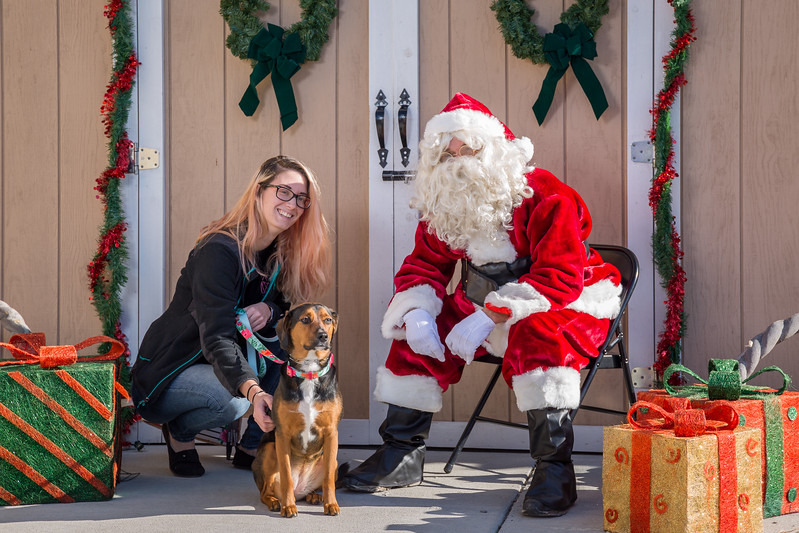Pet Pictures With Santa-73.jpg