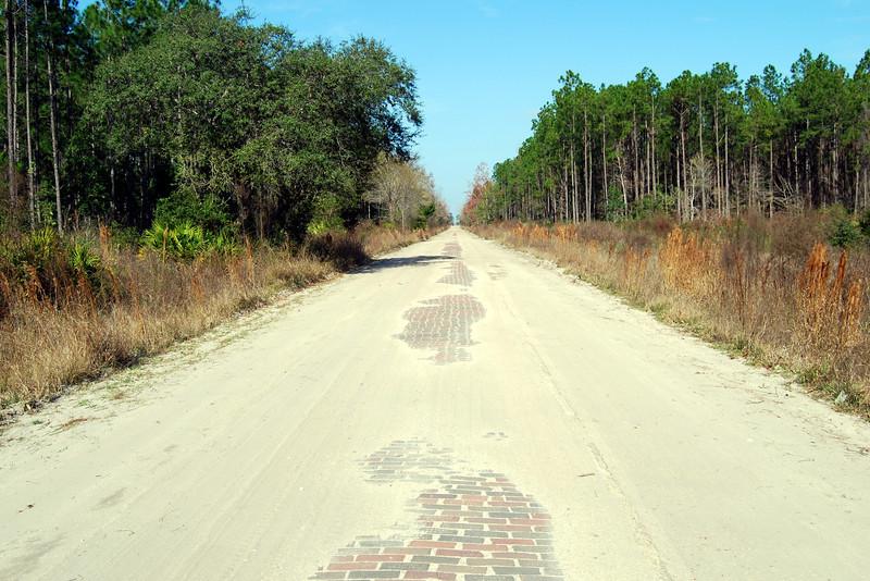 5 January 19 2013 Along Old Dixie Highway Brick Road.JPG