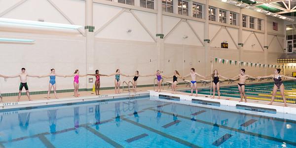 Varsity Swim & Dive Team 2014-15