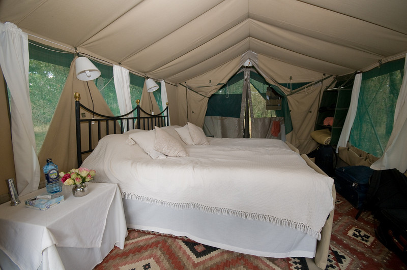 Adult tent complete with mattress with headboard, lights, shelves, dressing/washing area, shower, toilet,and fresh flowers!