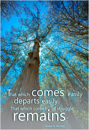 Wisdom & Inspiration