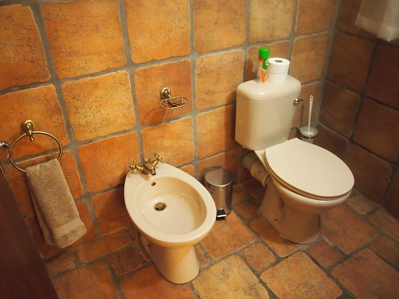 P3271090-toilet.JPG