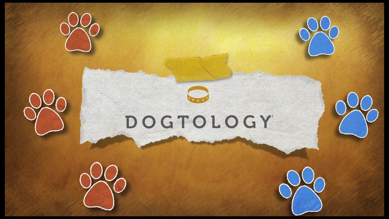 Dogtology_Final-720_052914.mov