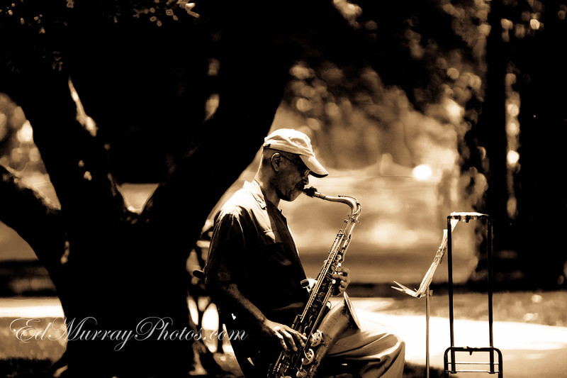 Public Sax: Here's a guy who was playing his saxaphone in Boston's Public Garden ------Thank you so much for all your comments on my Sea of Flags shot yesterday!!!