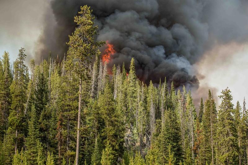 Aug 7 2019_Nethker Fire Crossing Burgdorf Road09.JPG