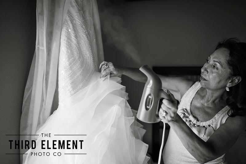 Third Element Photo Co Lina + Rett Carmel Bay Area Wedding Photographer_0015.jpg
