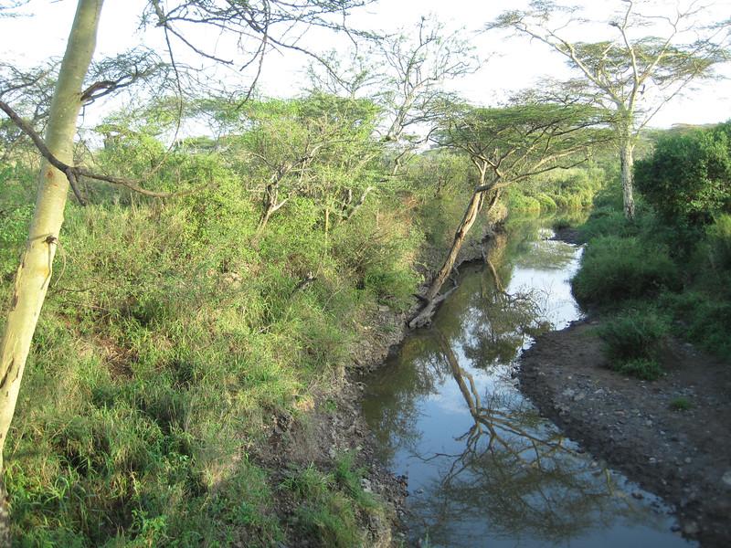Tanzania14-3506.jpg