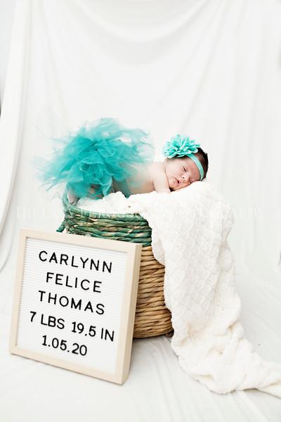 Hillary_Ferguson_Photography_Carlynn_Newborn191.jpg