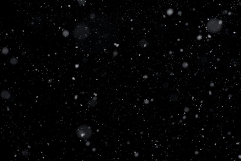Meg_Snow1.png