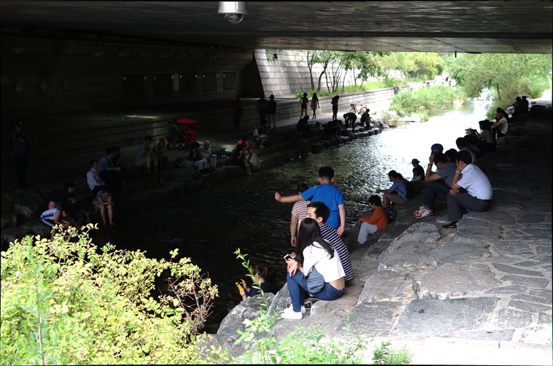 cooling off under a bridge