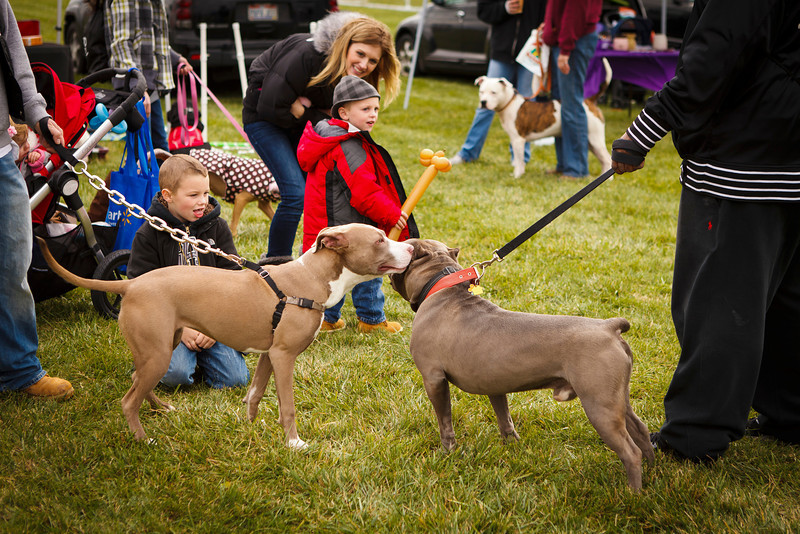 Bark Bash 2012 (436 of 438).JPG