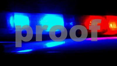 Custody hearing preceded Arizona shooting