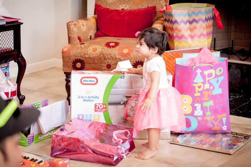 Paone Photography - Zehra's 1st Birthday-9113.jpg