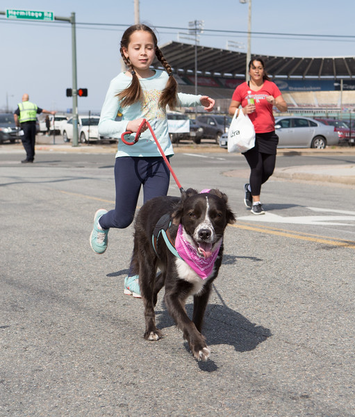 15thRichmondSPCADogJog-447.jpg