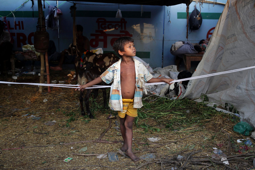 . A young Indian boy stands at a makeshift goat market on the eve of Eid al-Adha in New Delhi, India, Tuesday, Oct. 15, 2013. (AP Photo/Tsering Topgyal)
