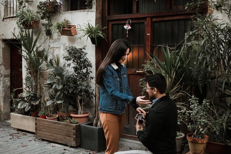 proposal-barcelona-ronak-8.jpg