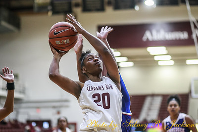 AAMU 2018-19 WBB vs Tennessee State