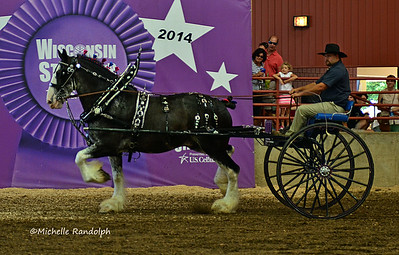 Wisconsin State Fair 2014