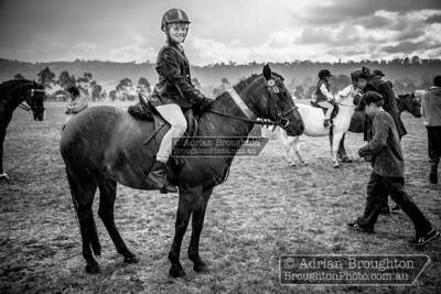 2014 - Brighton Equestrian Club Annual Show