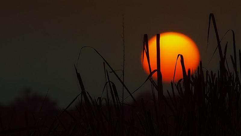 Sunrise&Sunset-109.jpg