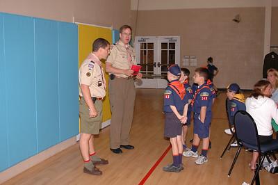 Tiger Badge 2006
