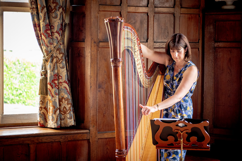 Our wonderful harpist, Catrin Morris Jones