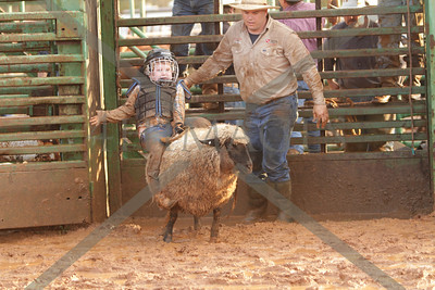 Bulls and Barrels jan. 2012 saturday
