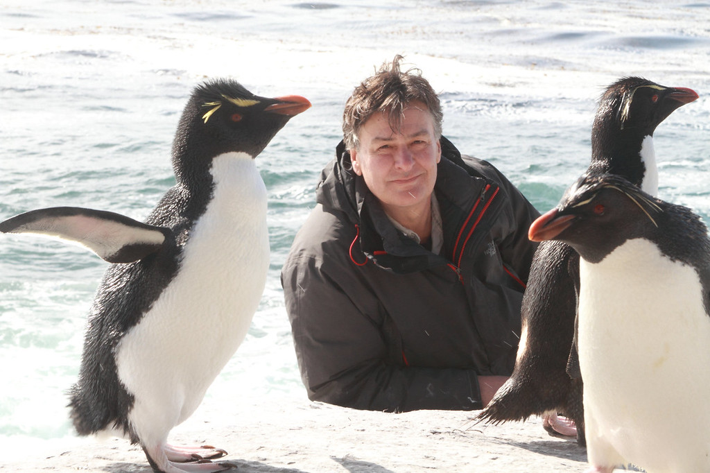 . Filmmaker John Downer with Rockhoppers in the Falkland Islands. His two-hour special, �Penguins: Waddle All the Way,� premiers Nov. 23 on Discovery. Jane Lynch narrates the Discovery/BBC co-production. (Photo by Geoff Bell/JDP World All Media)
