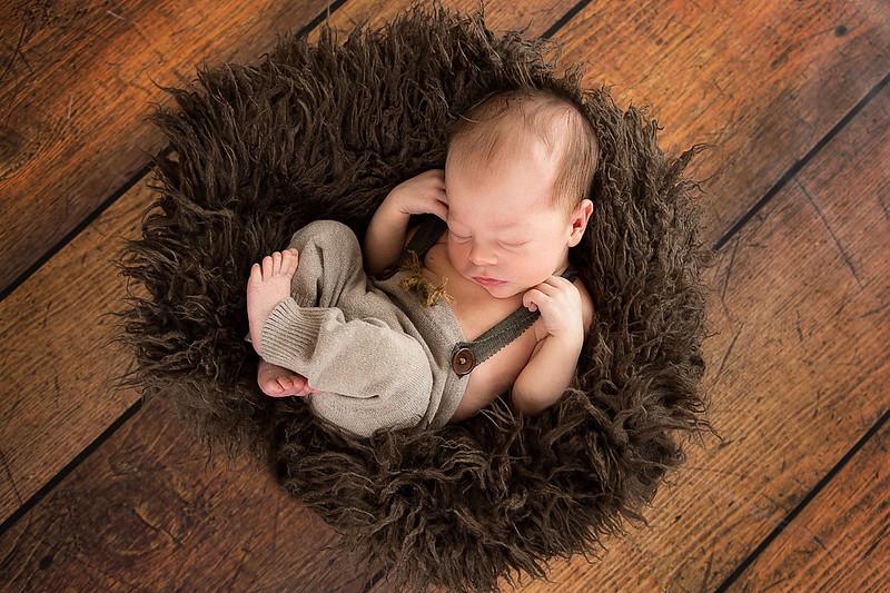 Newborns 20152.jpg