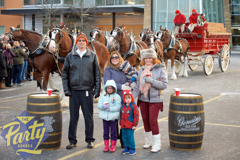 Clydesdale Portraits 326.jpg