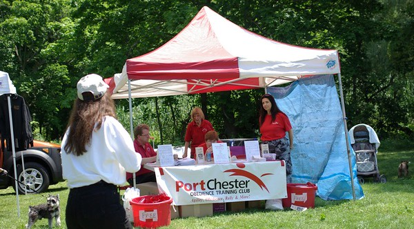 port chester obedience