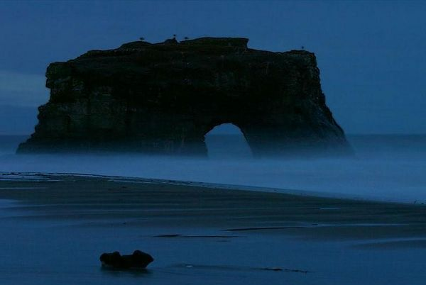 View at dawn on the Natural Bridge State Park, Santa Cruz, California.