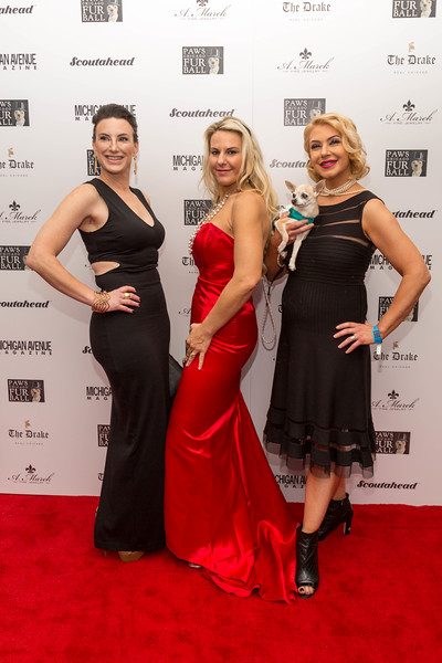 2016.11.18 - 2016 PAWS Chicago Fur Ball 031.jpg