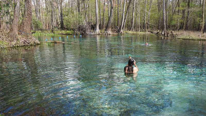 Spring surrounded by woods with a snorkeler standing up in the water holding their snorkel
